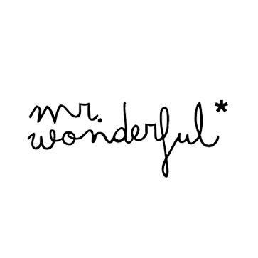 mr-wonderful